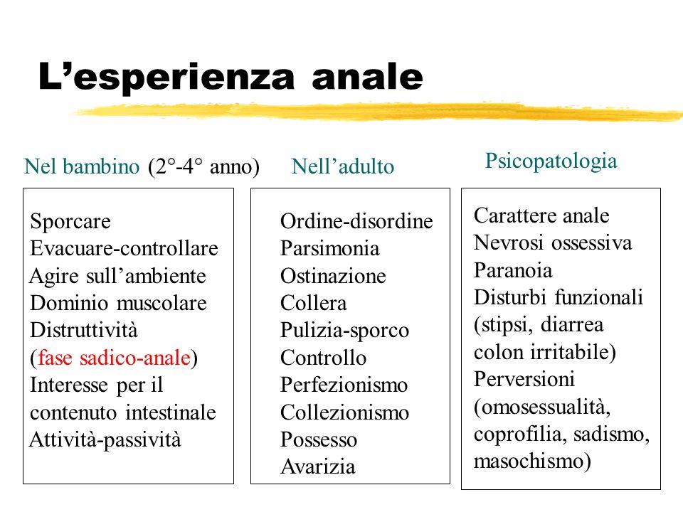 Lesperienza anale Nel bambino (2°-4° anno) Sporcare Evacuare-controllare Agire sullambiente Dominio muscolare Distruttività (fase sadico-anale) Intere