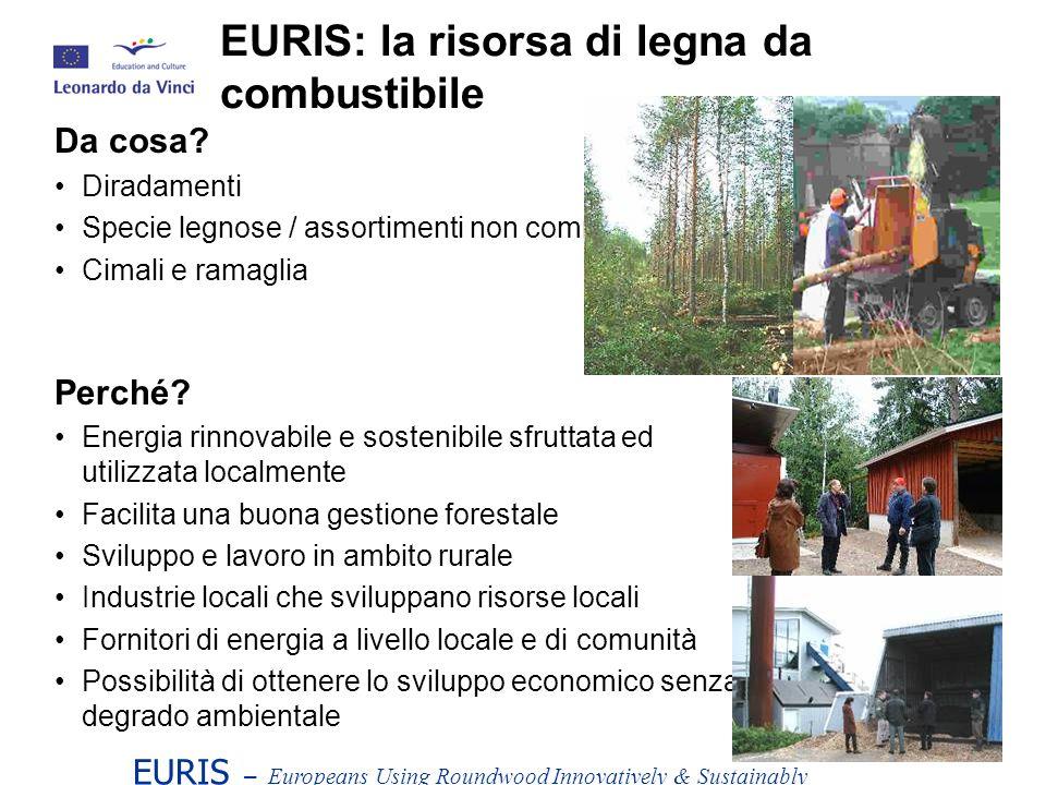 EURIS – Europeans Using Roundwood Innovatively & Sustainably Da cosa.