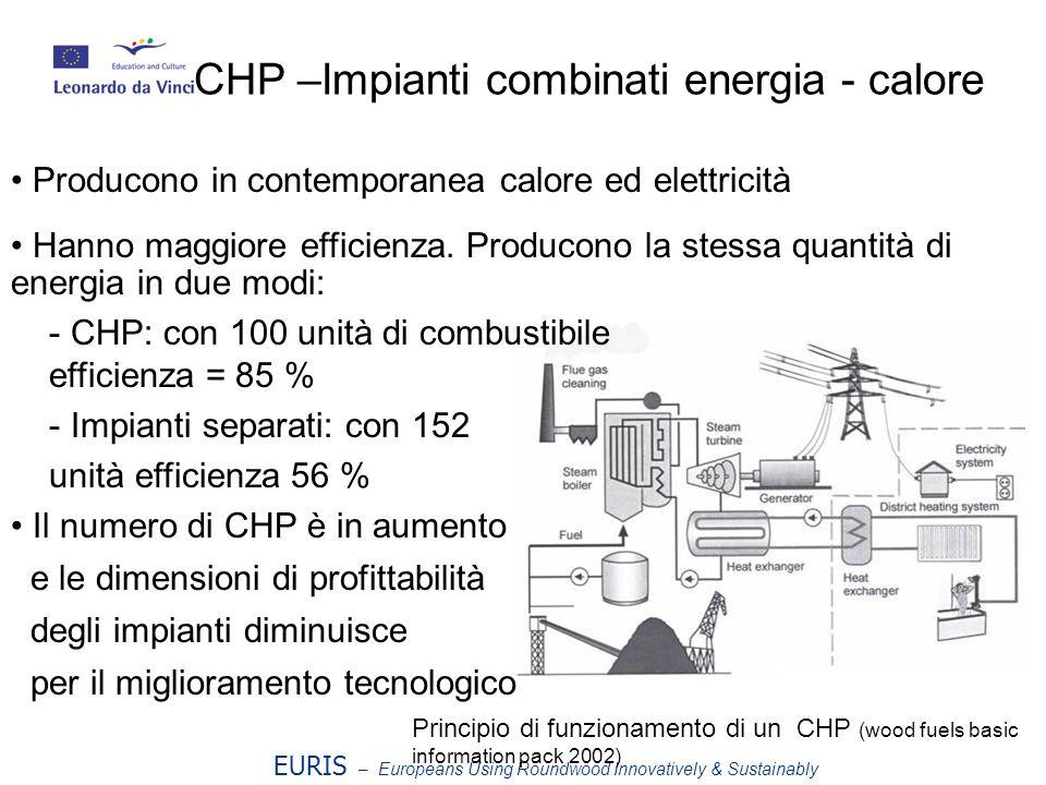 EURIS – Europeans Using Roundwood Innovatively & Sustainably CHP –Impianti combinati energia - calore Producono in contemporanea calore ed elettricità Hanno maggiore efficienza.