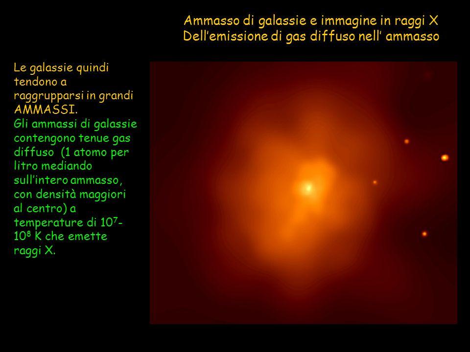 Le galassie quindi tendono a raggrupparsi in grandi AMMASSI. Gli ammassi di galassie contengono tenue gas diffuso (1 atomo per litro mediando sullinte