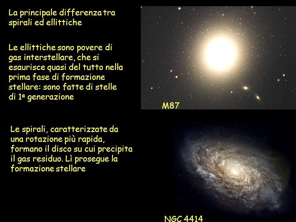 La principale differenza tra spirali ed ellittiche Le ellittiche sono povere di gas interstellare, che si esaurisce quasi del tutto nella prima fase d