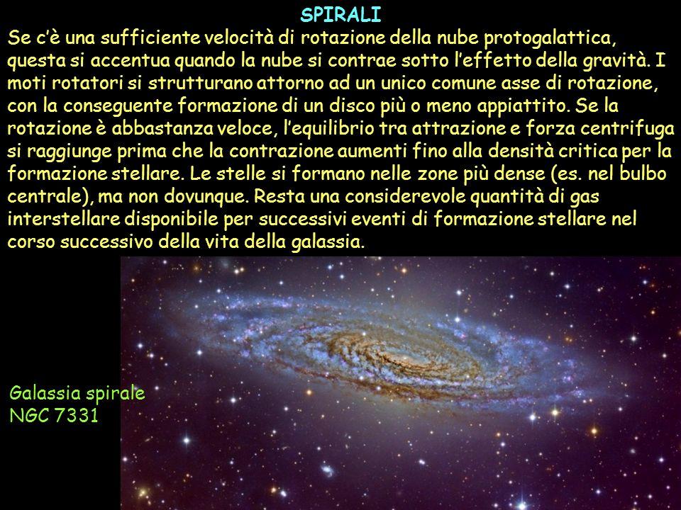 SPIRALI Se cè una sufficiente velocità di rotazione della nube protogalattica, questa si accentua quando la nube si contrae sotto leffetto della gravi