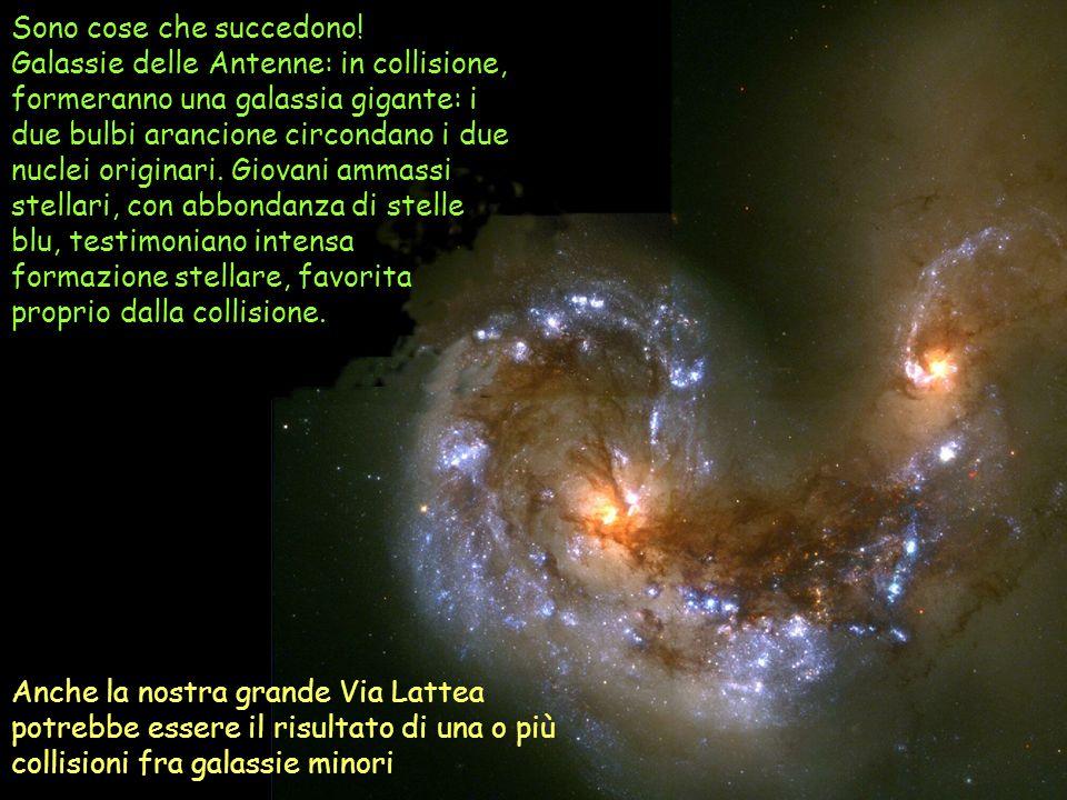 Sono cose che succedono! Galassie delle Antenne: in collisione, formeranno una galassia gigante: i due bulbi arancione circondano i due nuclei origina