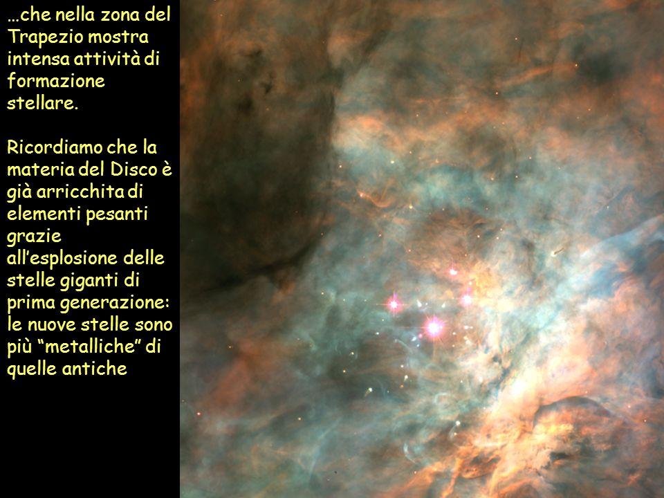 …che nella zona del Trapezio mostra intensa attività di formazione stellare. Ricordiamo che la materia del Disco è già arricchita di elementi pesanti