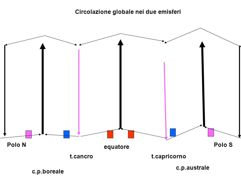 Circolazione globale nei due emisferi equatore Polo NPolo S c.p.boreale c.p.australe t.cancrot.capricorno