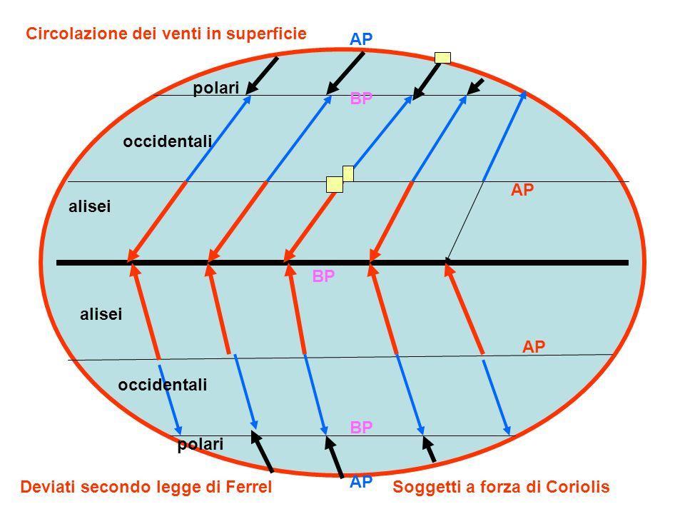 AP BP alisei occidentali polari Circolazione dei venti in superficie Deviati secondo legge di FerrelSoggetti a forza di Coriolis