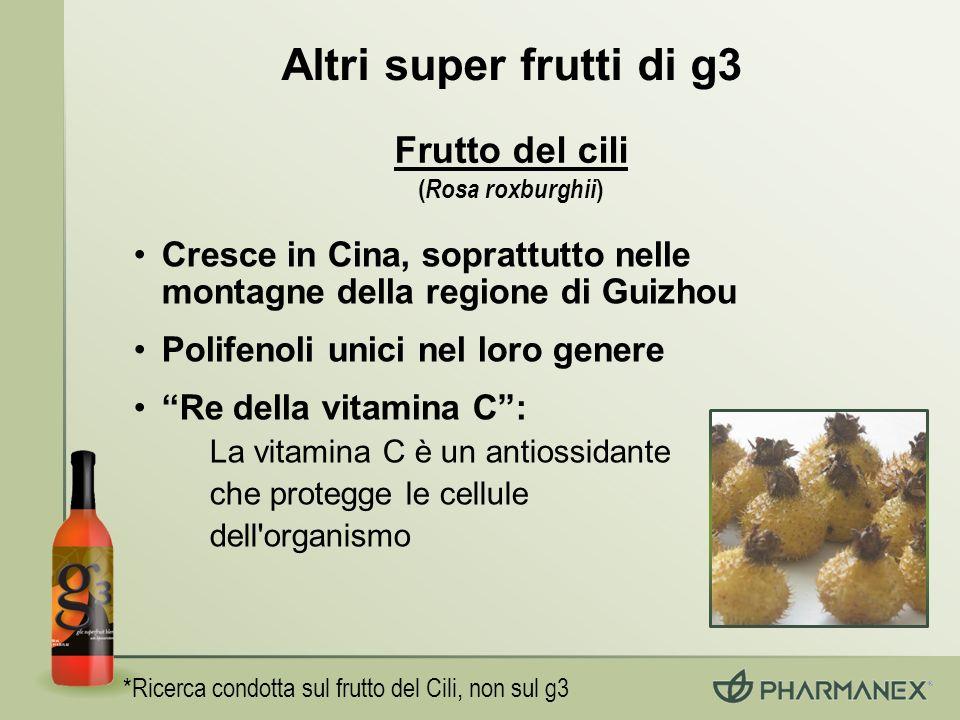 Altri super frutti di g3 *Ricerca condotta sul frutto del Cili, non sul g3 Frutto del cili ( Rosa roxburghii ) Cresce in Cina, soprattutto nelle monta