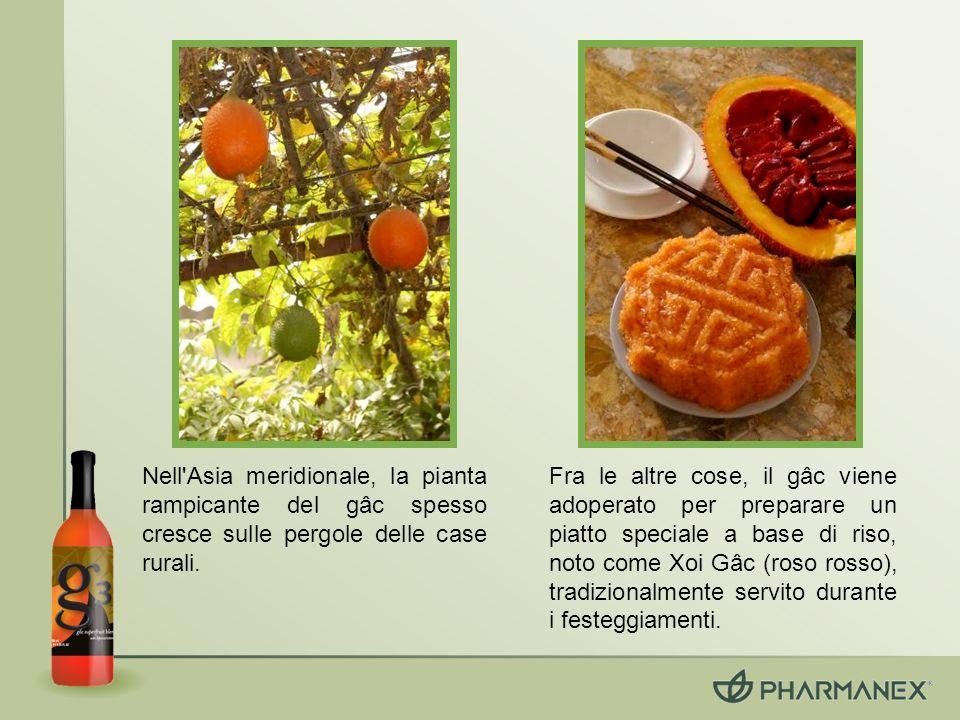 Il gâc contiene licopene, beta-carotene e vitamina E, tutti ingredienti noti come antiossidanti benefici.