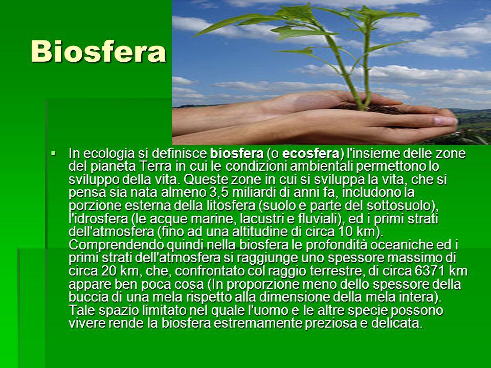 Biosfera In ecologia si definisce biosfera (o ecosfera) l'insieme delle zone del pianeta Terra in cui le condizioni ambientali permettono lo sviluppo