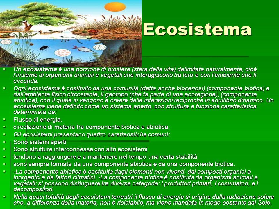 Ecosistema Un ecosistema è una porzione di biosfera (sfera della vita) delimitata naturalmente, cioè l insieme di organismi animali e vegetali che interagiscono tra loro e con l ambiente che li circonda.
