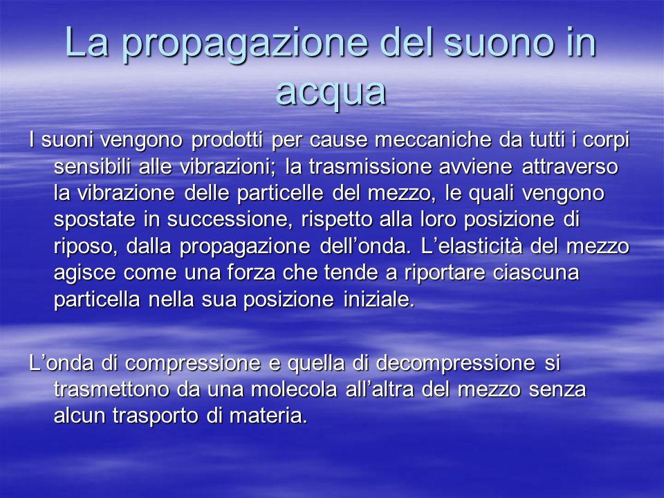 La propagazione del suono in acqua I suoni vengono prodotti per cause meccaniche da tutti i corpi sensibili alle vibrazioni; la trasmissione avviene a