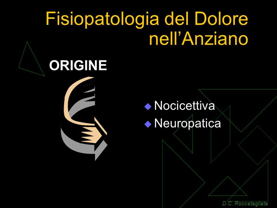 Fisiopatologia del Dolore nellAnziano Nocicettiva Neuropatica ORIGINE D.C. Roccatagliata