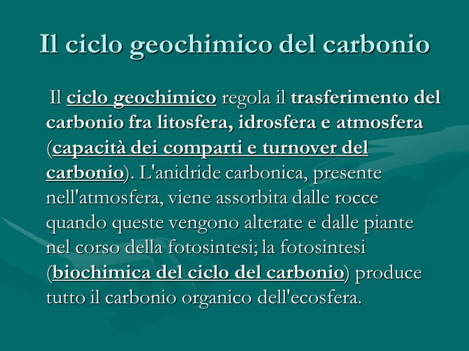 Il ciclo geochimico del carbonio Il ciclo geochimico regola il trasferimento del carbonio fra litosfera, idrosfera e atmosfera (capacità dei comparti