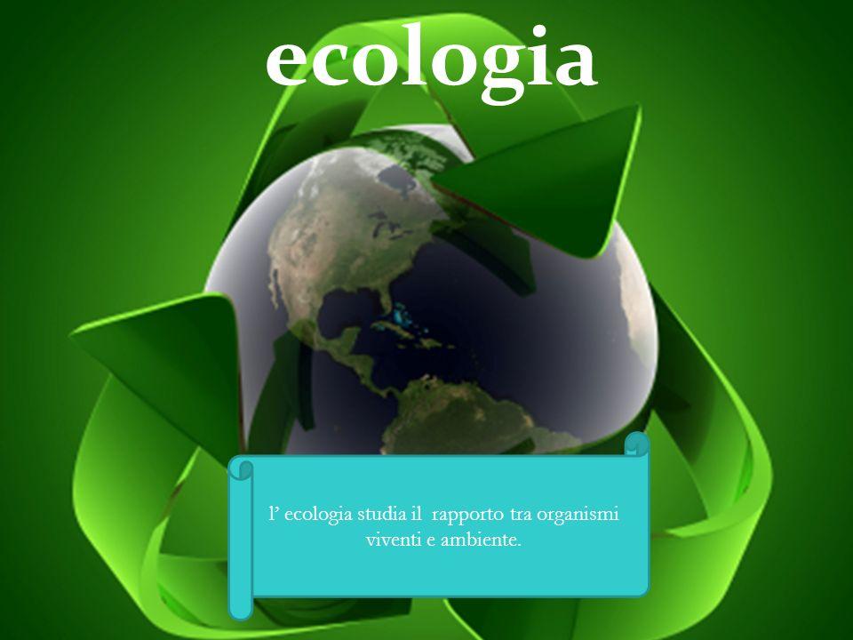 ecologia l ecologia studia il rapporto tra organismi viventi e ambiente.