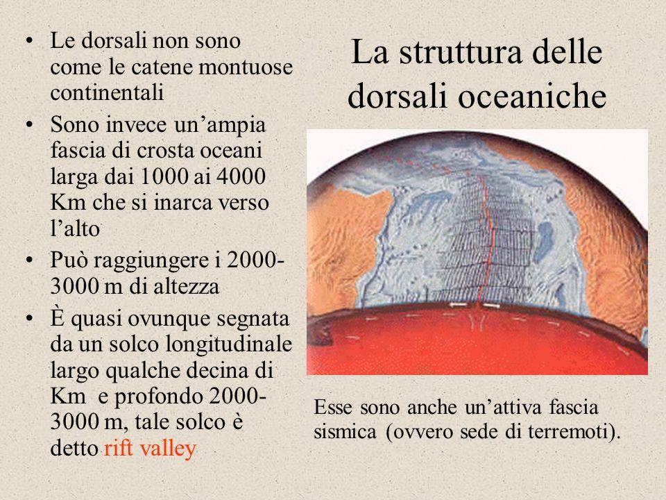 La struttura delle dorsali oceaniche Le dorsali non sono come le catene montuose continentali Sono invece unampia fascia di crosta oceani larga dai 1000 ai 4000 Km che si inarca verso lalto Può raggiungere i 2000- 3000 m di altezza È quasi ovunque segnata da un solco longitudinale largo qualche decina di Km e profondo 2000- 3000 m, tale solco è detto rift valley Esse sono anche unattiva fascia sismica (ovvero sede di terremoti).