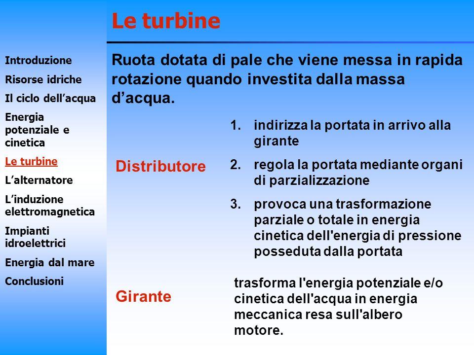 Le turbine Turbina Pelton Turbina Francis Introduzione Risorse idriche Il ciclo dellacqua Energia potenziale e cinetica Le turbine Lalternatore Linduzione elettromagnetica Impianti idroelettrici Energia dal mare Conclusioni