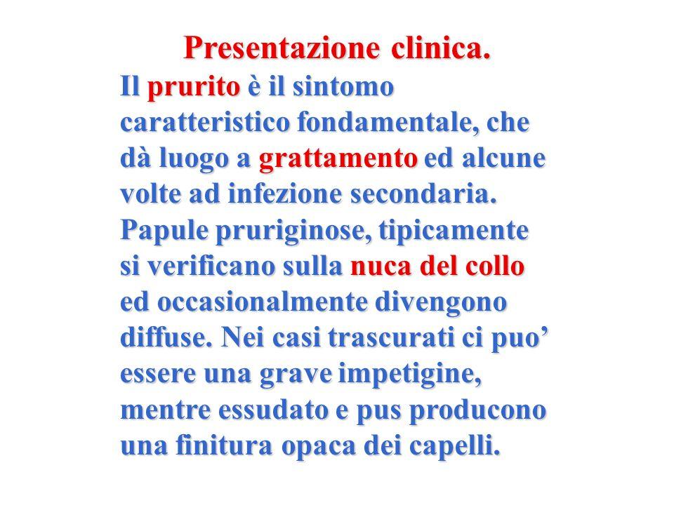 Presentazione clinica. Il prurito è il sintomo caratteristico fondamentale, che dà luogo a grattamento ed alcune volte ad infezione secondaria. Papule