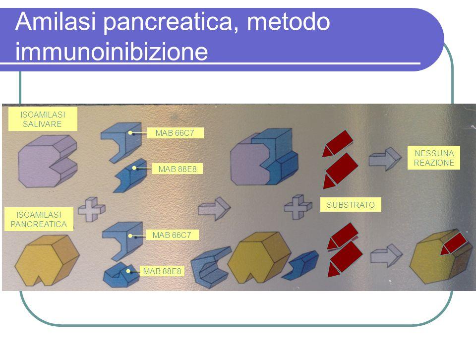 Amilasi pancreatica, metodo immunoinibizione ISOAMILASI PANCREATICA ISOAMILASI SALIVARE NESSUNA REAZIONE MAB 66C7 MAB 88E8 SUBSTRATO
