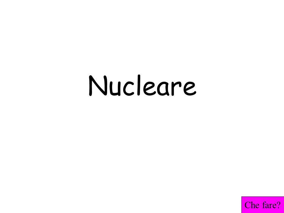 Nucleare Che fare?
