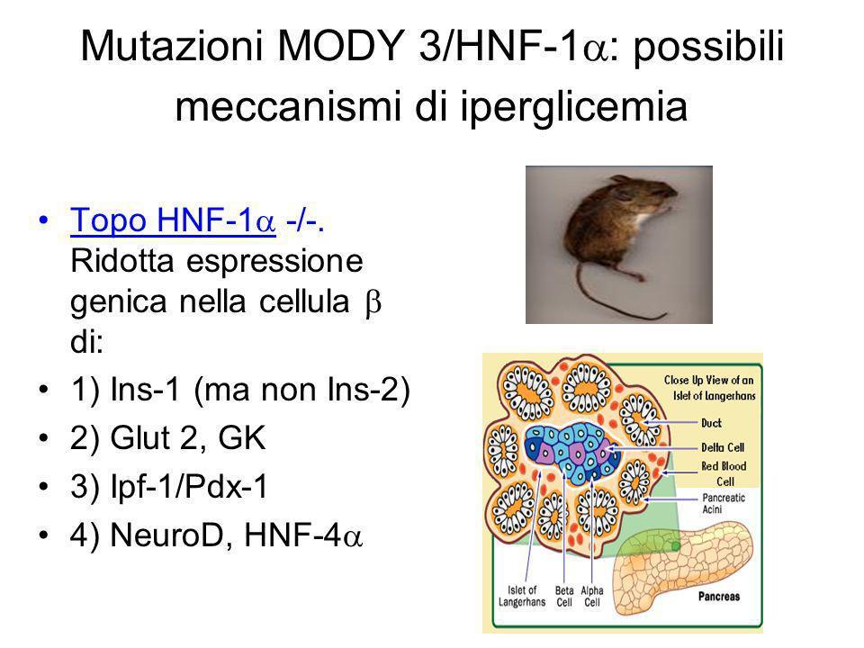 Il dosaggio degli autoanticorpi nel sospetto clinico di T1D in soggetti ad elevata familiarità ICA Decarbossilasi dellacido glutamico (GAD 65 ) Islet