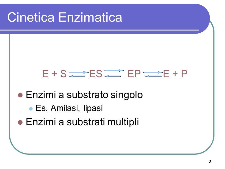 3 Cinetica Enzimatica Enzimi a substrato singolo Es. Amilasi, lipasi Enzimi a substrati multipli E + S ES EP E + P