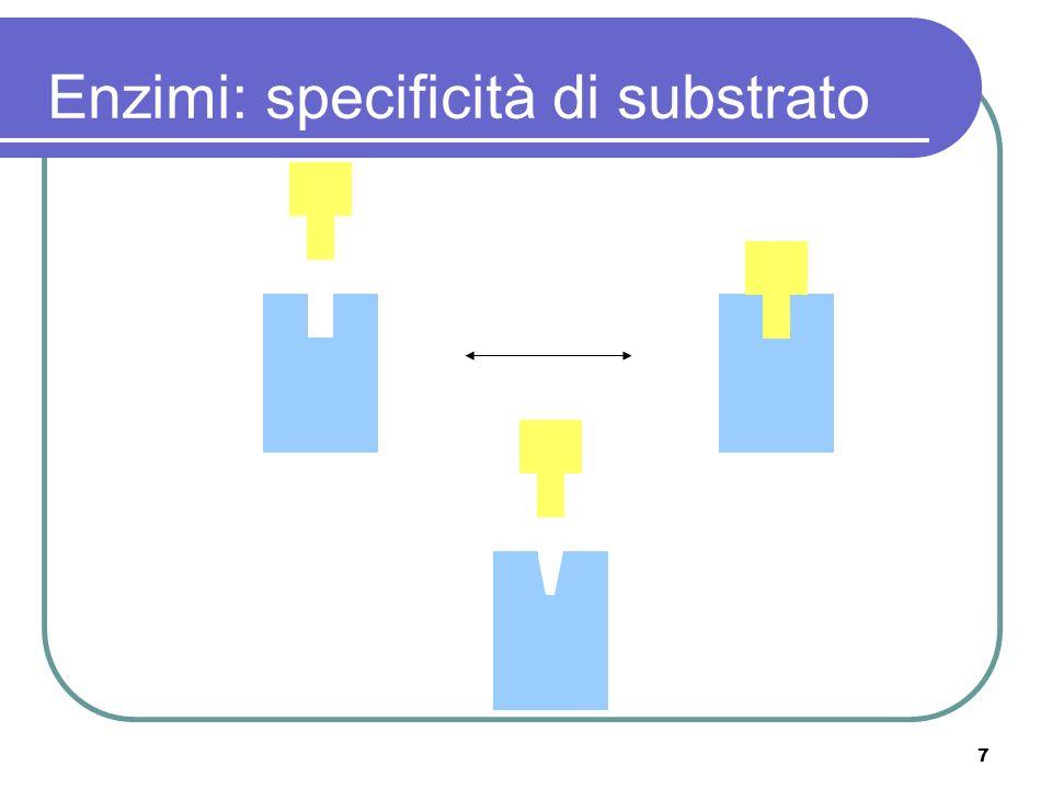7 Enzimi: specificità di substrato