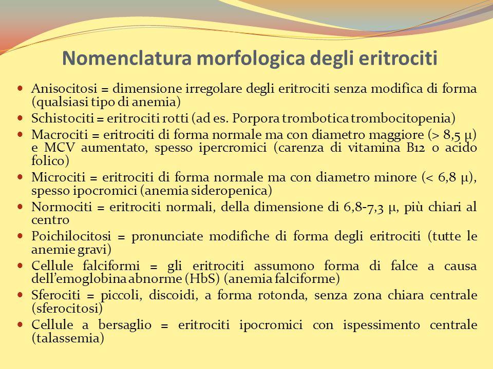 Nomenclatura morfologica degli eritrociti Anisocitosi = dimensione irregolare degli eritrociti senza modifica di forma (qualsiasi tipo di anemia) Schistociti = eritrociti rotti (ad es.