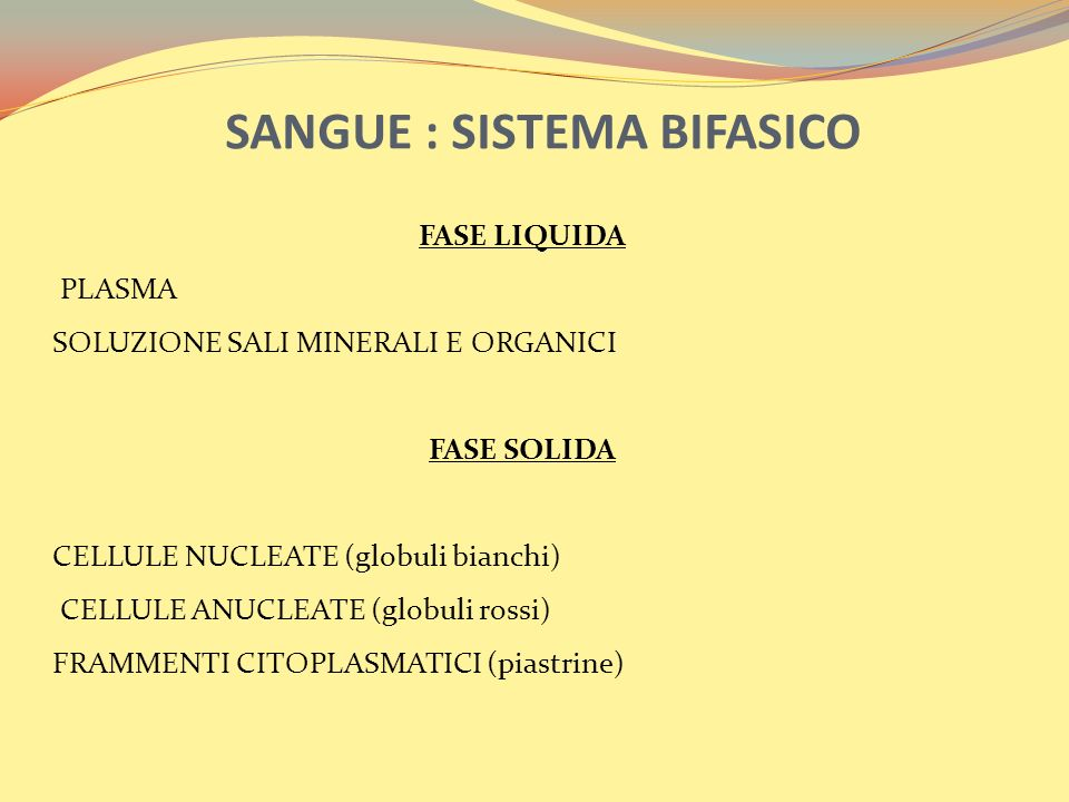 SANGUE : SISTEMA BIFASICO FASE LIQUIDA PLASMA SOLUZIONE SALI MINERALI E ORGANICI FASE SOLIDA CELLULE NUCLEATE (globuli bianchi) CELLULE ANUCLEATE (globuli rossi) FRAMMENTI CITOPLASMATICI (piastrine)