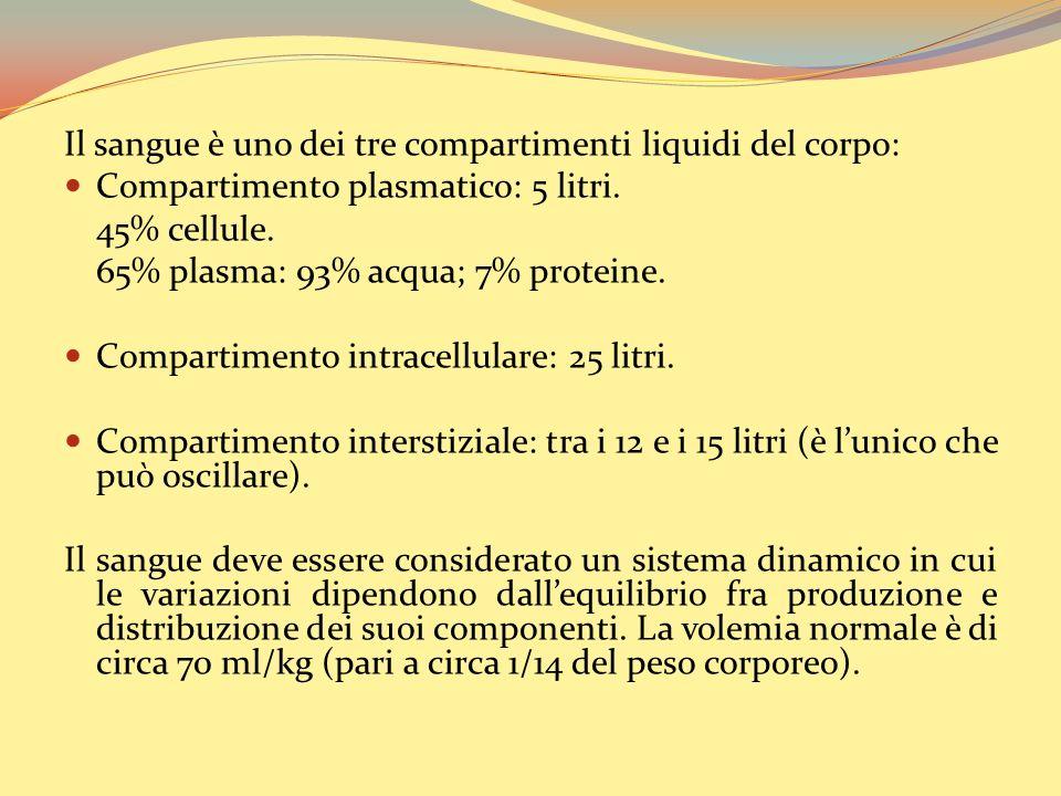 Il sangue è uno dei tre compartimenti liquidi del corpo: Compartimento plasmatico: 5 litri.