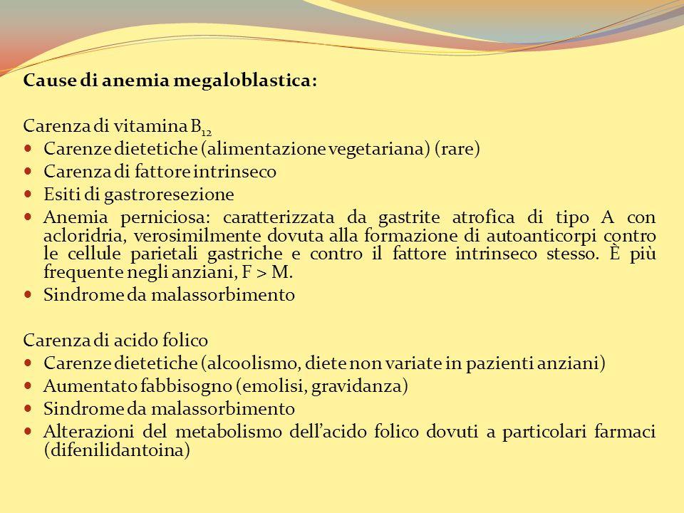 Cause di anemia megaloblastica: Carenza di vitamina B 12 Carenze dietetiche (alimentazione vegetariana) (rare) Carenza di fattore intrinseco Esiti di gastroresezione Anemia perniciosa: caratterizzata da gastrite atrofica di tipo A con acloridria, verosimilmente dovuta alla formazione di autoanticorpi contro le cellule parietali gastriche e contro il fattore intrinseco stesso.