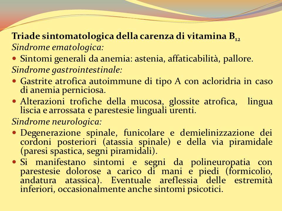 Triade sintomatologica della carenza di vitamina B 12 Sindrome ematologica: Sintomi generali da anemia: astenia, affaticabilità, pallore.