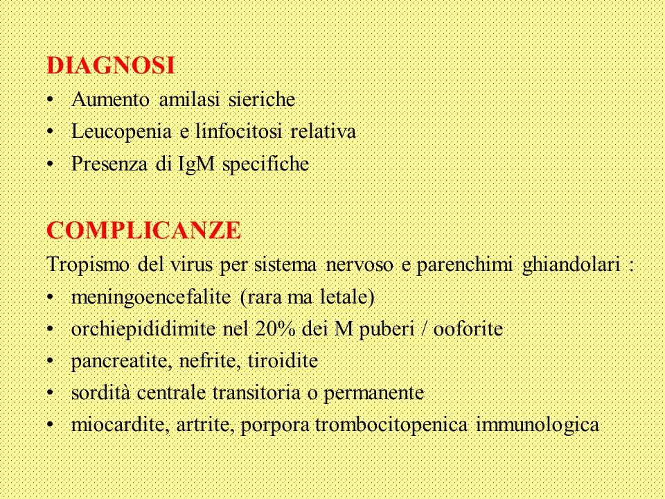 DIAGNOSI Aumento amilasi sieriche Leucopenia e linfocitosi relativa Presenza di IgM specifiche COMPLICANZE Tropismo del virus per sistema nervoso e parenchimi ghiandolari : meningoencefalite (rara ma letale) orchiepididimite nel 20% dei M puberi / ooforite pancreatite, nefrite, tiroidite sordità centrale transitoria o permanente miocardite, artrite, porpora trombocitopenica immunologica