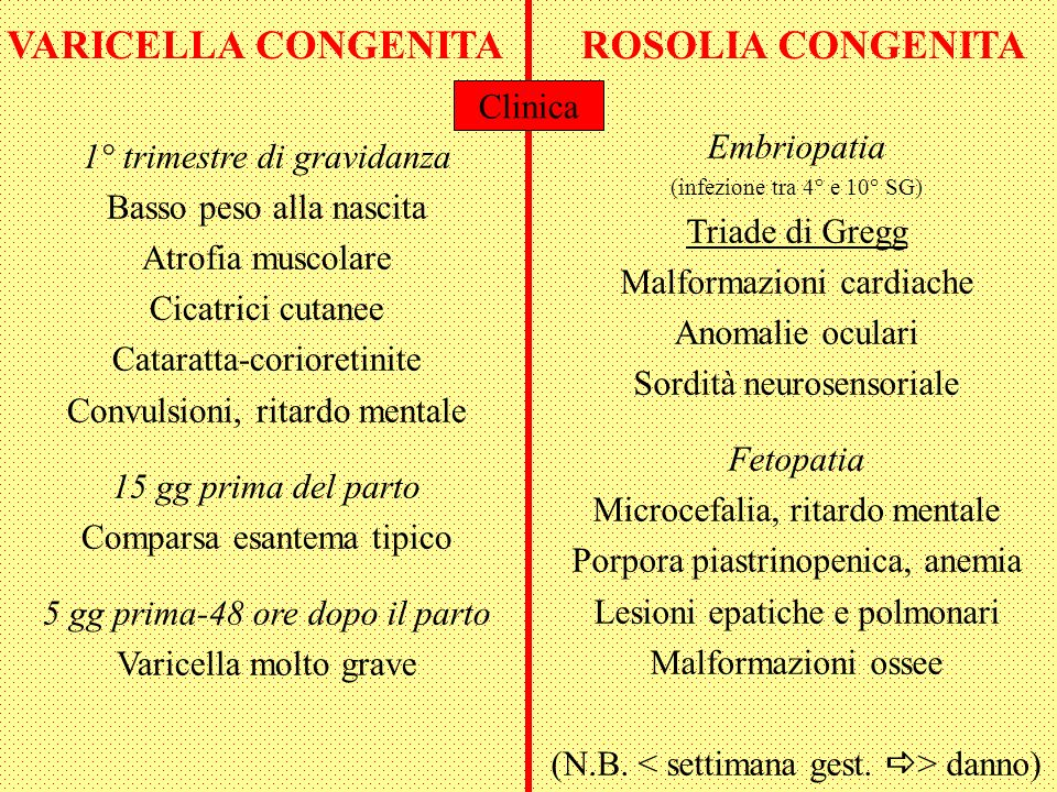 VARICELLA CONGENITAROSOLIA CONGENITA Embriopatia (infezione tra 4° e 10° SG) Triade di Gregg Malformazioni cardiache Anomalie oculari Sordità neurosensoriale Fetopatia Microcefalia, ritardo mentale Porpora piastrinopenica, anemia Lesioni epatiche e polmonari Malformazioni ossee (N.B.