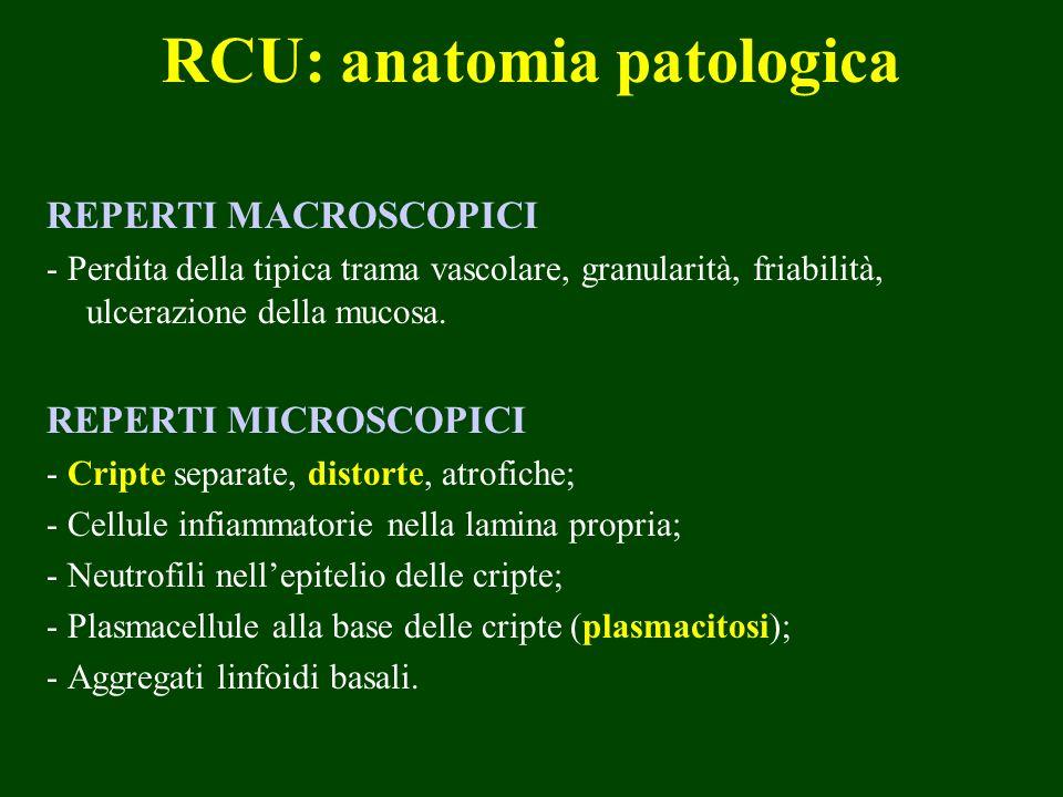 RCU: anatomia patologica REPERTI MACROSCOPICI - Perdita della tipica trama vascolare, granularità, friabilità, ulcerazione della mucosa. REPERTI MICRO