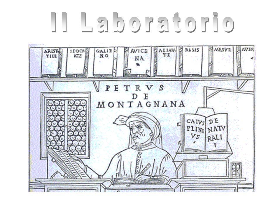 Laboratorio di Genetica medica Citogenetica (diagnosi prenatale, ecc.) Genetica molecolare