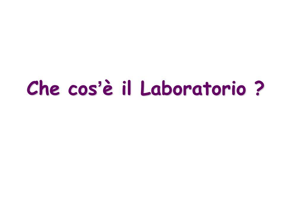 Che cos è il Laboratorio ?