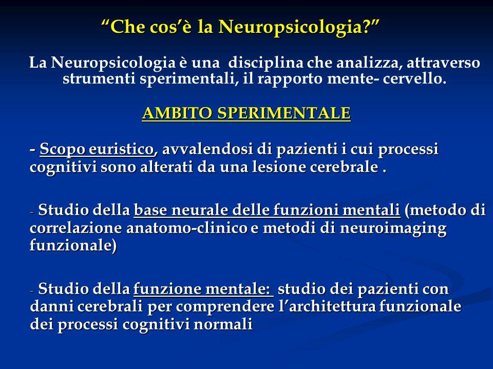 Che cosè la Neuropsicologia? La Neuropsicologia è una disciplina che analizza, attraverso strumenti sperimentali, il rapporto mente- cervello. AMBITO