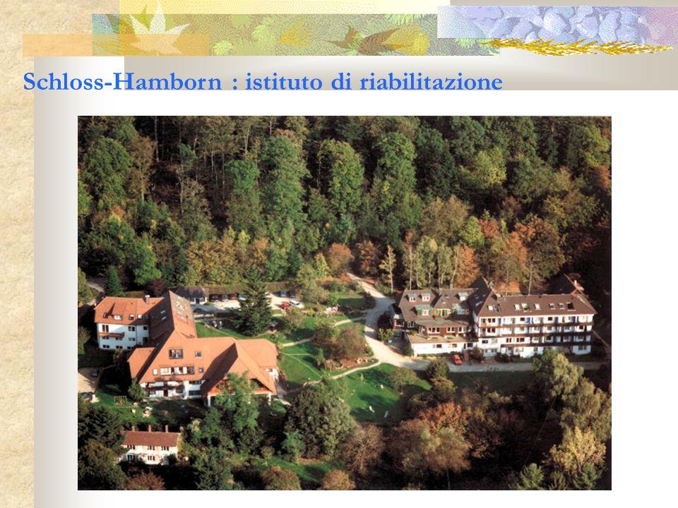 Schloss-Hamborn : istituto di riabilitazione