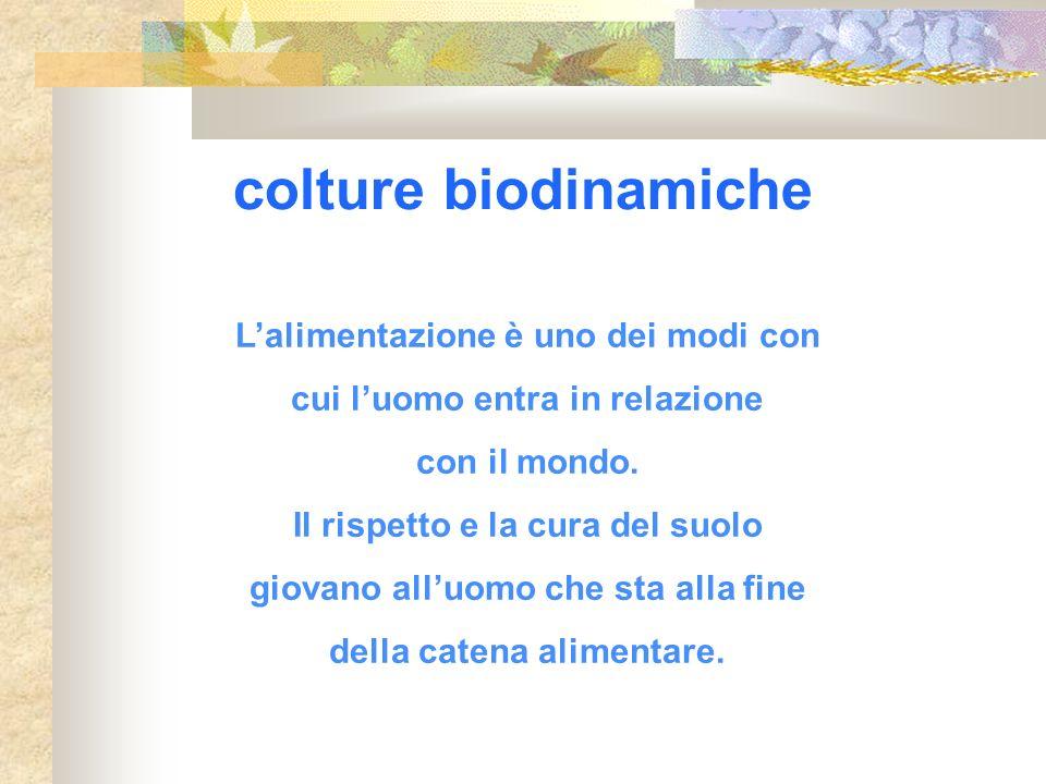 colture biodinamiche Lalimentazione è uno dei modi con cui luomo entra in relazione con il mondo. Il rispetto e la cura del suolo giovano alluomo che