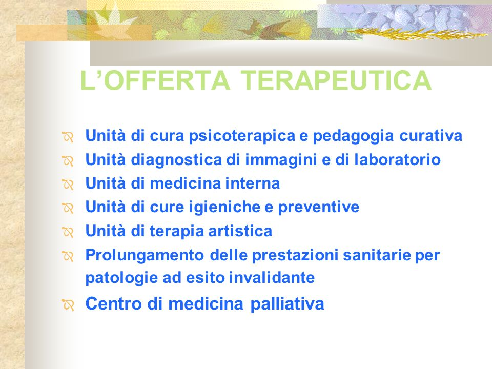 LOFFERTA TERAPEUTICA Unità di cura psicoterapica e pedagogia curativa Unità diagnostica di immagini e di laboratorio Unità di medicina interna Unità d