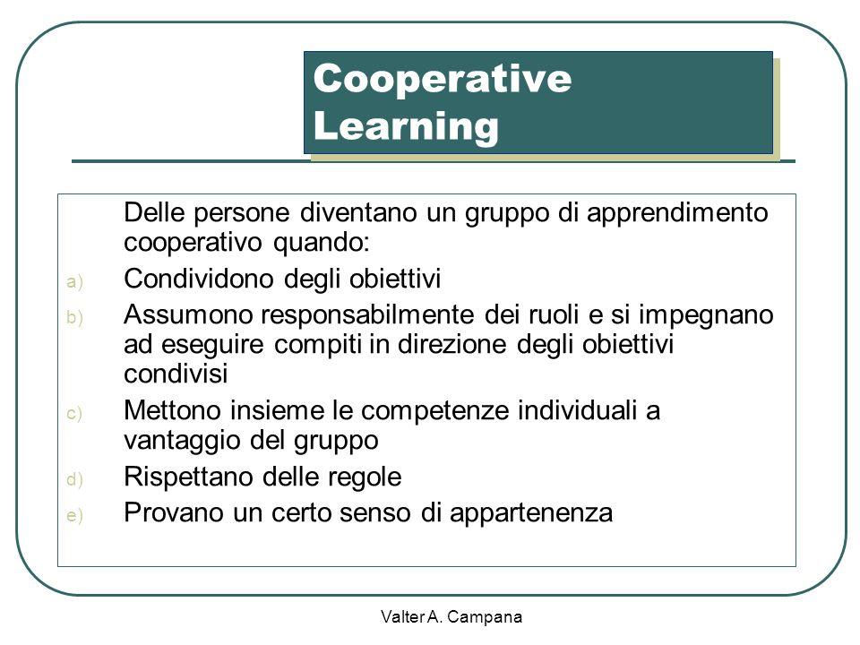 Valter A. Campana Pseudogruppo di apprendimento: gli studenti devono lavorare insieme ma non hanno interesse a farlo (compagni rivali, diffidenza) Gru