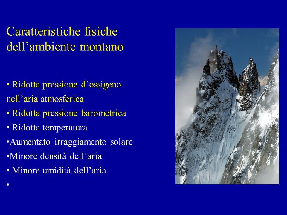 Caratteristiche fisiche dellambiente montano Ridotta pressione dossigeno nellaria atmosferica Ridotta pressione barometrica Ridotta temperatura Aumentato irraggiamento solare Minore densità dellaria Minore umidità dellaria