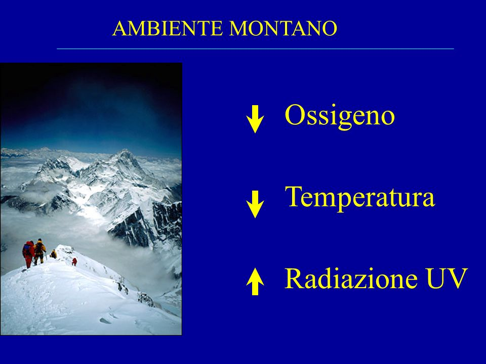 Definizione di Quota (Bartsch & Saltin Scand J Med Sci Sport 2008) Near sea-level0-500m Bassa Quota 500-2000m Media Quota 2000-3000m Alta Quota 3000-5500m Quota estrema> 5500m