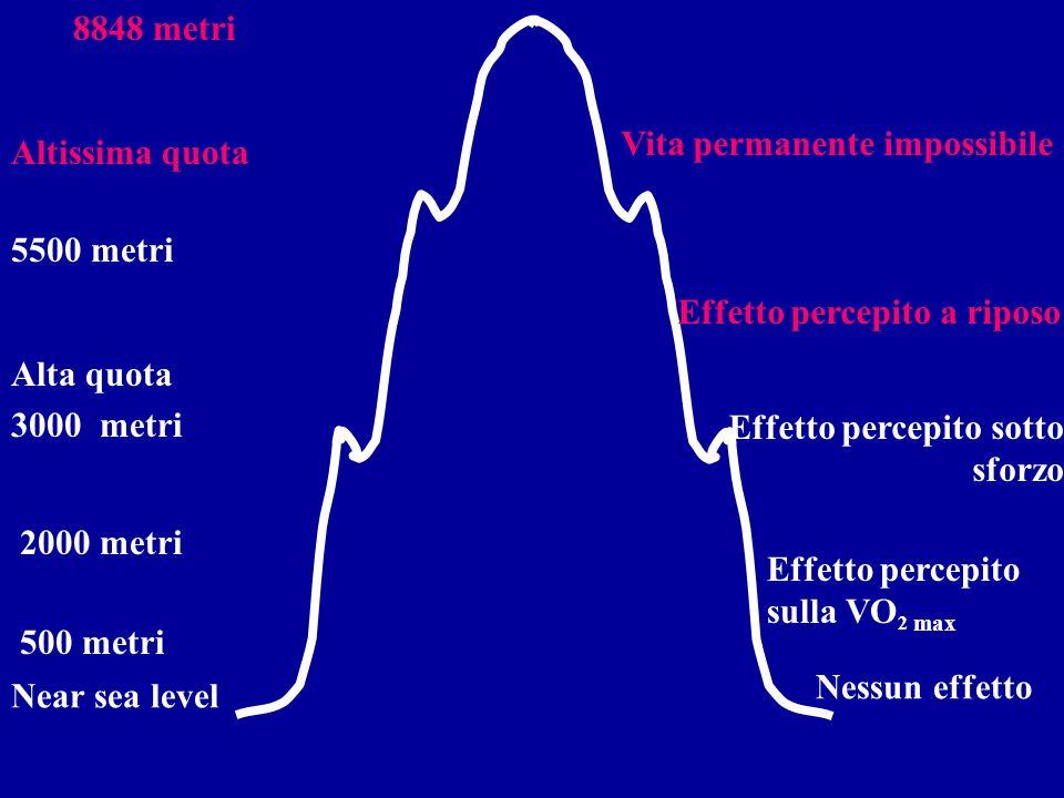500 metri 2000 metri 5500 metri 8848 metri Nessun effetto Near sea level Vita permanente impossibile Altissima quota Effetto percepito a riposo Alta quota Effetto percepito sotto sforzo 3000 metri Effetto percepito sulla VO 2 max