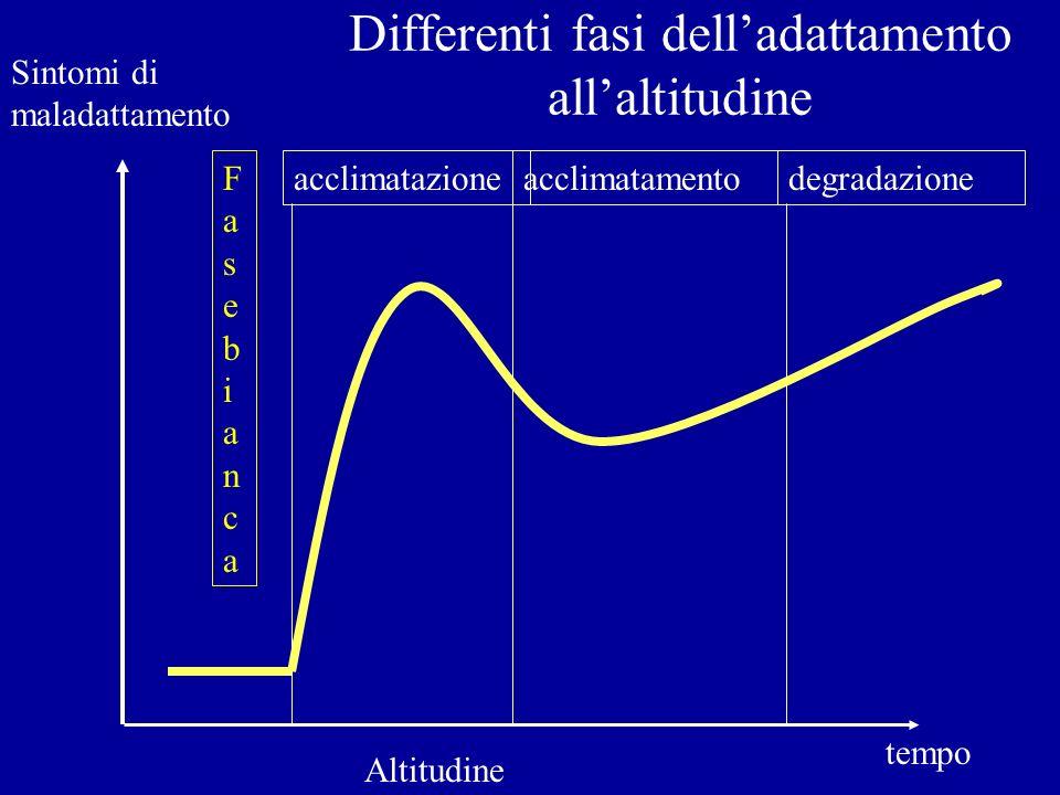 Differenti fasi delladattamento allaltitudine Sintomi di maladattamento Altitudine tempo acclimatazioneacclimatamentodegradazioneFasebiancaFasebianca
