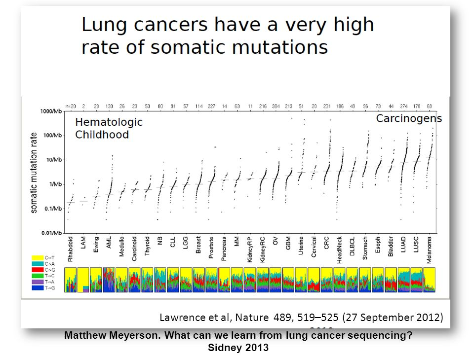 Lung Cancer ME TOO strategy in the war against lung cancer Genetech Academic + Investigators Merck Novartis Eli Lilly AVEO Pharmaceutical industry + Academic + Investigators Tony Mok, Sidney 2013
