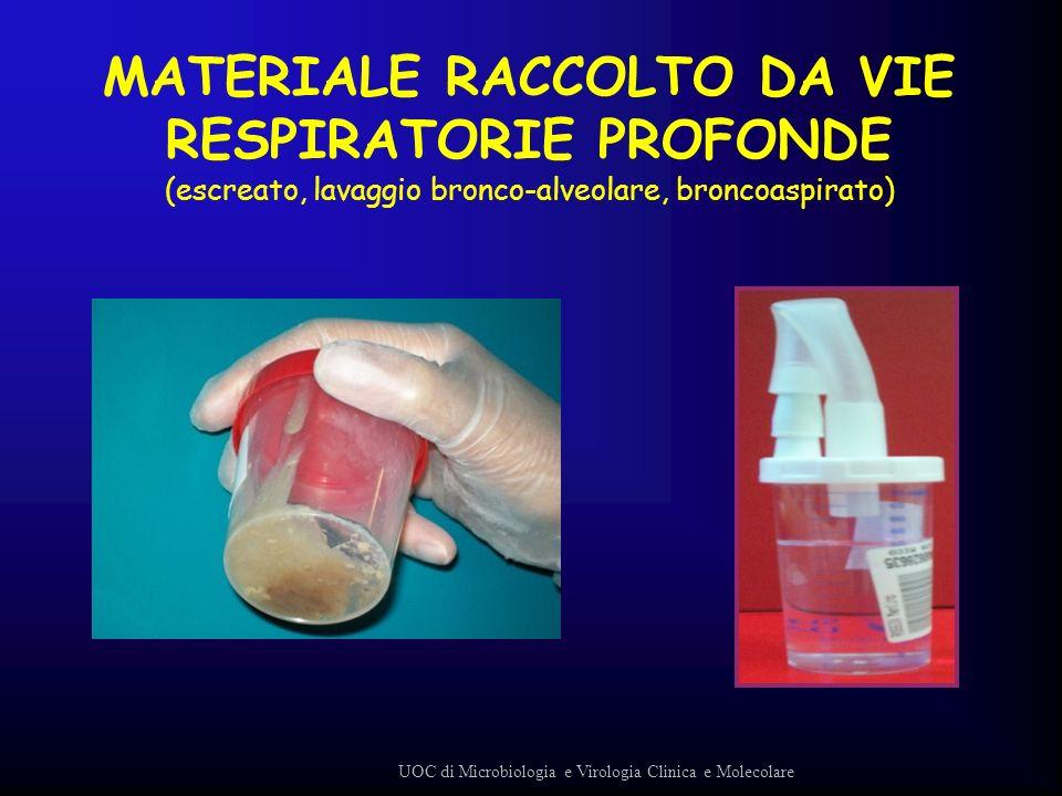 MATERIALE RACCOLTO DA VIE RESPIRATORIE PROFONDE (escreato, lavaggio bronco-alveolare, broncoaspirato) UOC di Microbiologia e Virologia Clinica e Molec