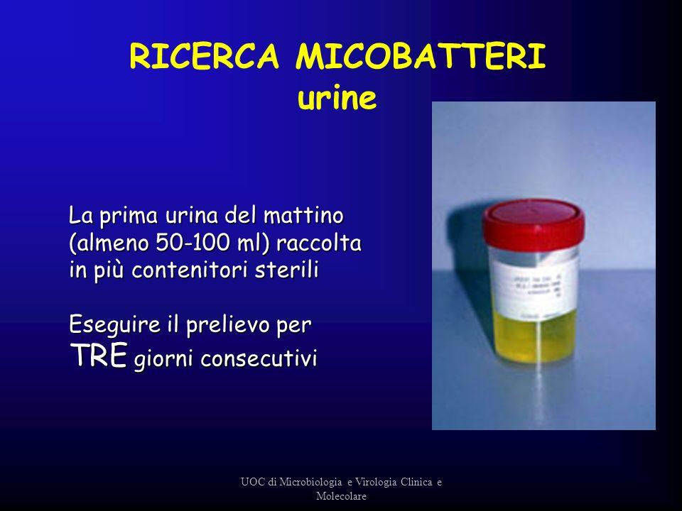 La prima urina del mattino (almeno 50-100 ml) raccolta in più contenitori sterili Eseguire il prelievo per TRE giorni consecutivi UOC di Microbiologia