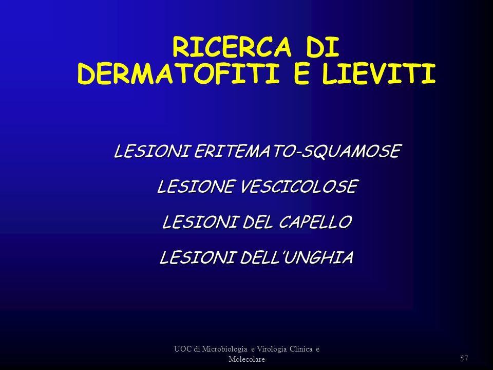 57 UOC di Microbiologia e Virologia Clinica e Molecolare LESIONI ERITEMATO-SQUAMOSE LESIONE VESCICOLOSE LESIONI DEL CAPELLO LESIONI DELLUNGHIA RICERCA