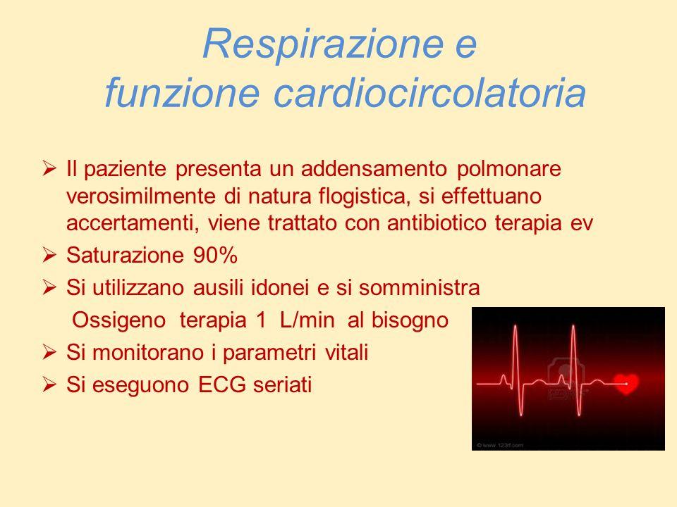 Respirazione e funzione cardiocircolatoria Il paziente presenta un addensamento polmonare verosimilmente di natura flogistica, si effettuano accertame